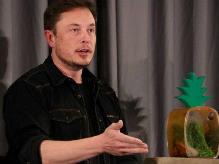 Elon Musk zegt dat Tesla wordt stilgelegd als zijn auto's in China, elders, worden bespioneerd
